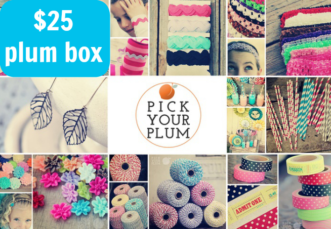 $25 Pick Your Plum Box - - 1 of 6 prizes in The Thinking Closet's Blogiversary Giveaway!  9/6 - 9/11
