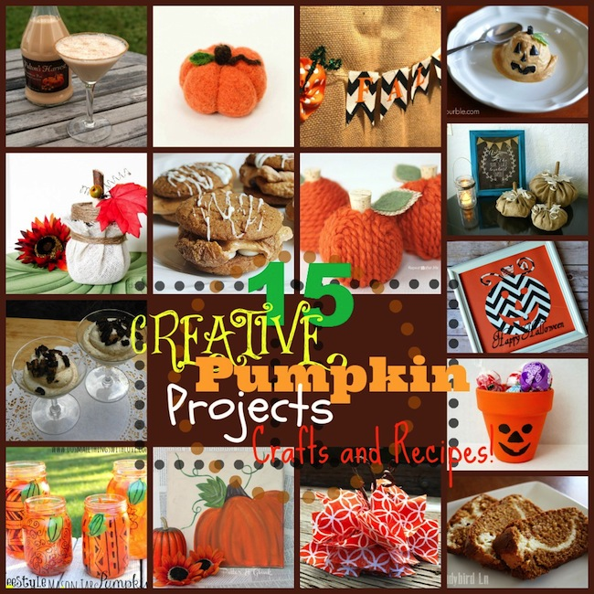 15 Creative Pumpkin Projects...crafts, recipes, and more!