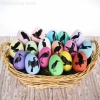 Bird Nerd Easter Eggs