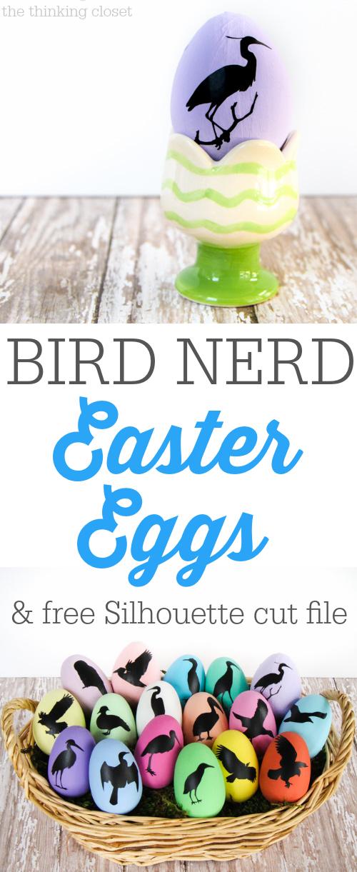 Bird Nerd Easter Eggs. Bird Nerd Easter Eggs   the thinking closet