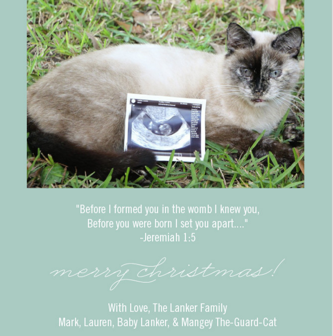 our christmas card pregnancy announcement we