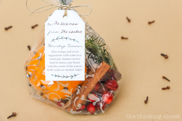 Stovetop Simmer Satchels & FREE Custom Gift Tag | Evidence that inexpensive and last-minute gifts can be meaningful! Here's everything you need from supplies to assembly instructions to the adorable holiday gifts tags with instructions for the recipient (yep, they're FREE). If Christmas had a scent, this would be it! Yum yum yum.